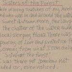 Sisters Of The Forest Artist Notes